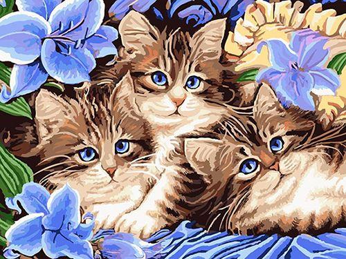 Картина по номерам 30х40 «Котята в цветах»
