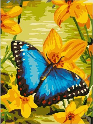 Картина по номерам 30х40 «Синяя бабочка»