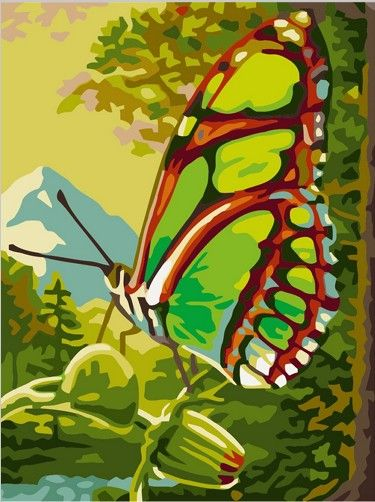 Картина по номерам 30х40 «Зеленая бабочка»