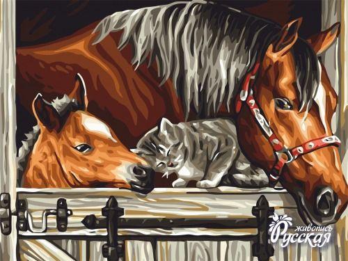 Картина по номерам 30х40 «Лошадь и жеребенок»