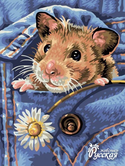 Картина по номерам 30х40 «Хомяк в кармане»