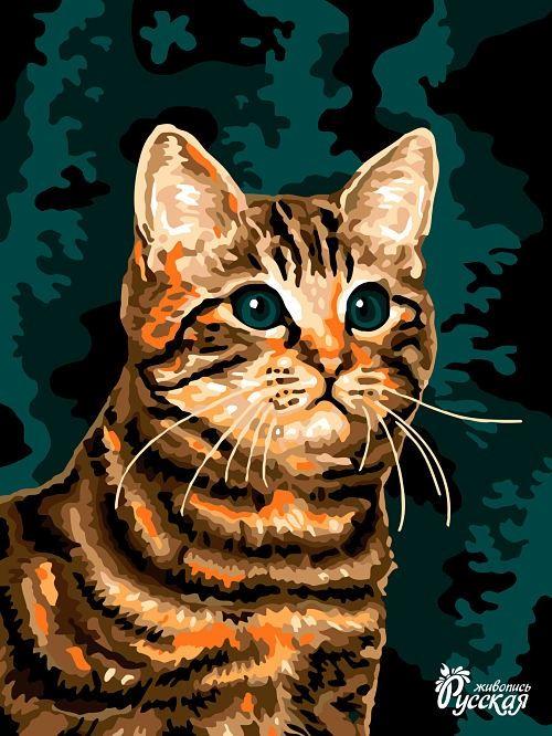 Картина по номерам на картоне 30х40 «Котейка»