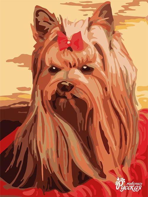 Картина по номерам на картоне 30х40 «Милая собачка»