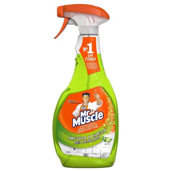 Средство для мытья стекол «Mr. Muscle Профессионал», 500 мл